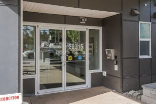 "Photo 20: 401 22315 122 Avenue in Maple Ridge: West Central Condo for sale in ""The Emerson"" : MLS®# R2397969"