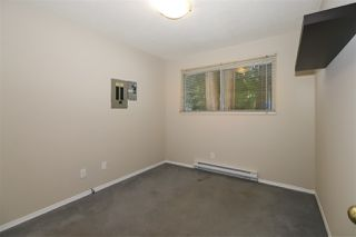 Photo 14: 4515 200A Street in Langley: Langley City House for sale : MLS®# R2428905