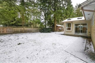 Photo 17: 4515 200A Street in Langley: Langley City House for sale : MLS®# R2428905