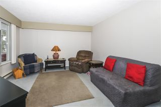 Photo 4: 4515 200A Street in Langley: Langley City House for sale : MLS®# R2428905