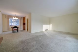 Photo 17: 8526 141 Street in Edmonton: Zone 10 House for sale : MLS®# E4184753