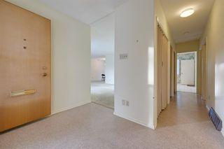 Photo 15: 8526 141 Street in Edmonton: Zone 10 House for sale : MLS®# E4184753