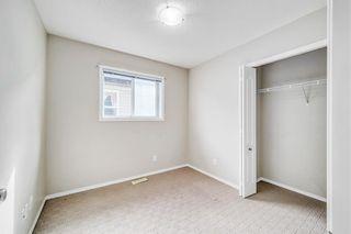Photo 12: 341 SADDLECREST Way NE in Calgary: Saddle Ridge Detached for sale : MLS®# A1036499