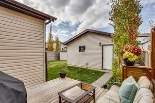 Photo 22: 157 Morningside Gardens SW: Airdrie Detached for sale : MLS®# A1040860