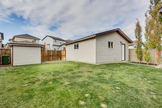Photo 24: 157 Morningside Gardens SW: Airdrie Detached for sale : MLS®# A1040860