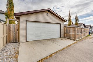 Photo 26: 157 Morningside Gardens SW: Airdrie Detached for sale : MLS®# A1040860