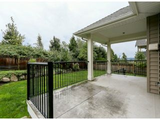"Photo 19: 5888 163B Street in Surrey: Cloverdale BC House for sale in ""The Highlands"" (Cloverdale)  : MLS®# F1321640"