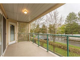 """Photo 19: 208 20433 53 Avenue in Langley: Langley City Condo for sale in """"Countryside Estates"""" : MLS®# R2388310"""