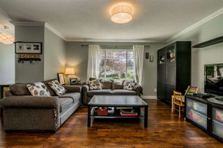 Photo 3: 20867 52A Avenue in Langley: Langley City House for sale : MLS®# R2401414