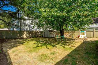 Photo 17: 20867 52A Avenue in Langley: Langley City House for sale : MLS®# R2401414
