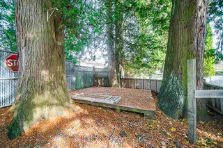 Photo 14: 12649 96 Avenue in Surrey: Cedar Hills House for sale (North Surrey)  : MLS®# R2418342