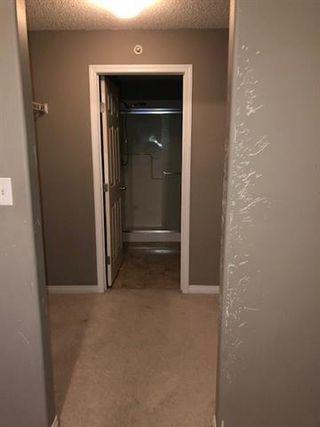 Photo 9: #411 5340 199 ST NW in Edmonton: Zone 58 Condo for sale : MLS®# E4184148