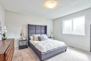 Photo 13: 17825 60A Street in Edmonton: Zone 03 House for sale : MLS®# E4206019