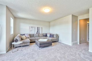 Photo 9: 17825 60A Street in Edmonton: Zone 03 House for sale : MLS®# E4206019