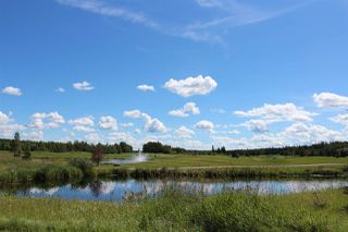 Photo 26: 174 53126 RR 70: Rural Parkland County Manufactured Home for sale : MLS®# E4206408