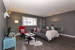Main Photo: 5 9630 82 Avenue in Edmonton: Zone 15 Condo for sale : MLS®# E4211545