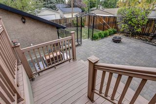 Photo 38: 9727 3 Street SE in Calgary: Acadia Detached for sale : MLS®# A1036923