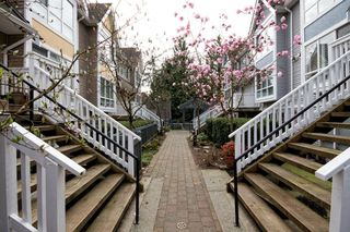 "Photo 3: 8 1015 LYNN VALLEY Road in North Vancouver: Lynn Valley Townhouse for sale in ""River Rock"" : MLS®# V1007505"