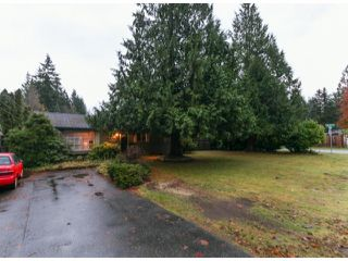 Photo 1: 4070 205A ST in Langley: Brookswood Langley House for sale : MLS®# F1427762