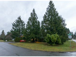 Photo 2: 4070 205A ST in Langley: Brookswood Langley House for sale : MLS®# F1427762