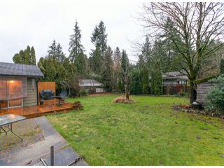 Photo 18: 4070 205A ST in Langley: Brookswood Langley House for sale : MLS®# F1427762