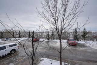 Photo 14: 217 1180 Hyndman Road: Edmonton Condo  : MLS®# E4138342