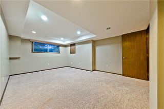 Photo 20: 167 EDGEMONT ESTATES DR NW in Calgary: Edgemont House for sale : MLS®# C4221851