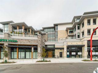 Photo 15: 205 3230 CONNAUGHT Crescent in North Vancouver: Edgemont Condo for sale : MLS®# R2401757
