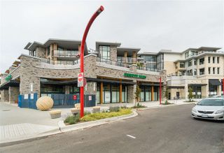 Main Photo: 205 3230 CONNAUGHT Crescent in North Vancouver: Edgemont Condo for sale : MLS®# R2401757