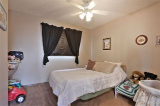 Photo 25: 12 DEERFIELD Place: Spruce Grove House for sale : MLS®# E4173880