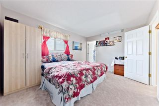 Photo 18: 203 CORAL SPRINGS Circle NE in Calgary: Coral Springs Detached for sale : MLS®# C4301307