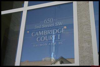 Photo 27: 401 650 Southwest 3 Street in Salmon Arm: Cambridge Court House for sale (Downtown Salmon Arm)  : MLS®# 10096495