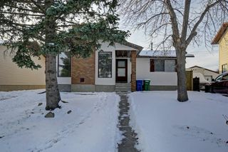Photo 1: 132 Summerfield Close SW: Airdrie Detached for sale : MLS®# A1049034