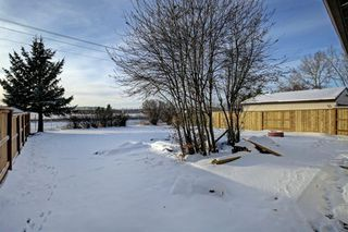 Photo 28: 132 Summerfield Close SW: Airdrie Detached for sale : MLS®# A1049034