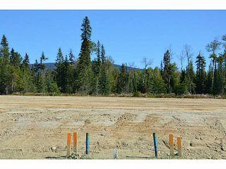 """Photo 12: LOT 1 BELL Place in Mackenzie: Mackenzie -Town Land for sale in """"BELL PLACE"""" (Mackenzie (Zone 69))  : MLS®# N227293"""