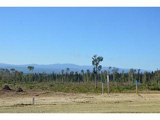 """Photo 4: LOT 1 BELL Place in Mackenzie: Mackenzie -Town Land for sale in """"BELL PLACE"""" (Mackenzie (Zone 69))  : MLS®# N227293"""