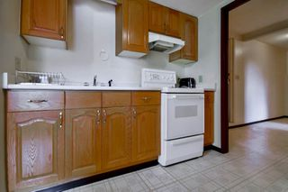 Photo 12: 6943 AUBREY STREET in Burnaby: Sperling-Duthie House 1/2 Duplex for sale (Burnaby North)  : MLS®# R2062369