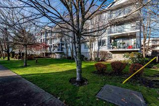"Main Photo: 312 20177 54A Avenue in Langley: Langley City Condo for sale in ""STONEGATE"" : MLS®# R2419590"