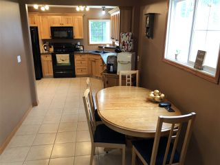 Photo 28: 508 462014 RGE RD 10: Rural Wetaskiwin County House for sale : MLS®# E4202321