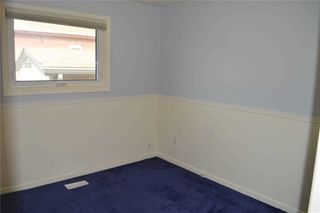 Photo 5: 16 Homestead Avenue in Toronto: West Hill House (Bungalow) for lease (Toronto E10)  : MLS®# E4911083