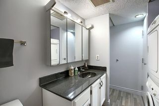 Photo 20: 301 1202 13 Avenue SW in Calgary: Beltline Apartment for sale : MLS®# A1046308