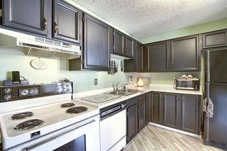 Photo 4: 301 1202 13 Avenue SW in Calgary: Beltline Apartment for sale : MLS®# A1046308