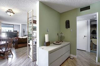 Photo 6: 301 1202 13 Avenue SW in Calgary: Beltline Apartment for sale : MLS®# A1046308