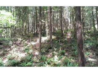 Photo 4: # LT.19 WILSON ST in Mission: Stave Falls Land for sale : MLS®# F1424374