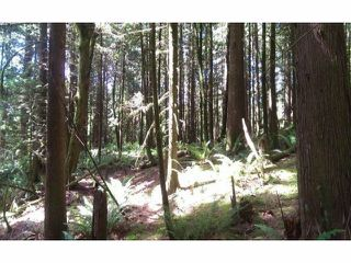 Photo 5: # LT.19 WILSON ST in Mission: Stave Falls Land for sale : MLS®# F1424374