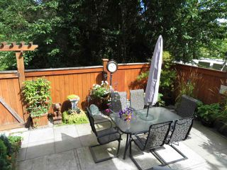 Photo 6: 8144 211 STREET in Langley: Willoughby Heights House for sale : MLS®# R2093922