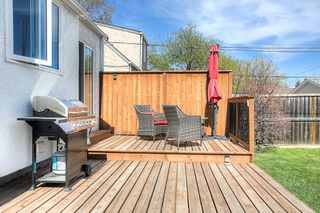 Photo 18: 250 Montgomery Avenue in Winnipeg: Riverview Single Family Detached for sale (1A)  : MLS®# 1913218