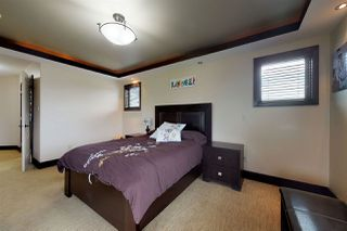 Photo 16: 1054 CONNELLY Way in Edmonton: Zone 55 House for sale : MLS®# E4170779