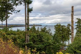 Photo 65: 321 Wireless Rd in : CV Comox (Town of) House for sale (Comox Valley)  : MLS®# 860085