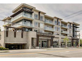 Photo 1: 311 6011 NO 1 Road in Richmond: Terra Nova Condo for sale : MLS®# V1082253